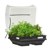 Self Watering Raised Garden Bed Kit With Protective Cover Tabletop Planter Box
