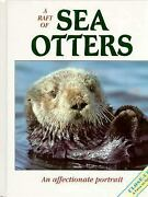 Raft Of Sea Otters An Affectionate Portrait Library Binding Vic