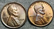 1934 1938-s Lincoln Cent Wheat Penny ---- Gem Bu+ Lot ---- N808