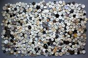 Huge Lot 1,210 G Of Vintage Mother Of Pearl Buttons Large Size 1.7 - 3.6cm.