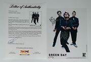 Green Day X3 Billie Joe Mike And Tre Signed 2005 American Idiot Promo Photo Psa