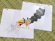 Things At The Time Dress Luffy Roronoa Zorro Cell Painting Video Correction