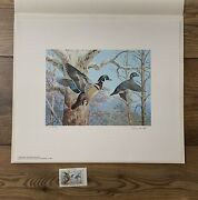 1983 Pennsylvania - State Duck Stamp Print Ned Smith With Stamp