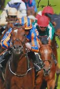 Ryan Moore Hand Signed 12x8 Photo Order Of St George Horse Racing Autograph