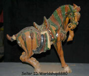 14.8 Antique Old China Tang Sancai Pottery Dynasty Running Animal Horse Statue