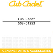 Cub Cadet 503-01253 Cylinder Head Assembly Challenger 550 4x4 Utility Vehicles