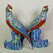 Antique A Pair Of Chinese Porcelain Parrots With Enamel 19th-20th Century.