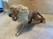 Antique Circus Lion Taxidermy Figure Toy With Real Fur And Glass Eyes