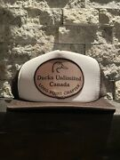 Ducks Unlimited Canada Brown Truckers Hat Long Point Chapter Vintage Vtg Snap