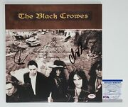Chris And Rich Robinson Signed The Black Crowes Southern Harmony Record Album Psa