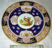 Antique Chamberlains Worcester Porcelain Plate English Exotic Bird Hand Painted
