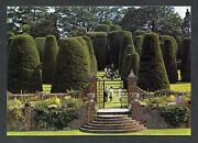 C1980's View Of The Carolean Topiary Garden, Packwood House.