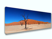 Namib Desert Namibia Africa Panoramic Picture Canvas Print Home Decor Wall Art