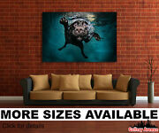 Wall Art Canvas Picture Print - Funny Dog Swimming With Face Under Water 3.2