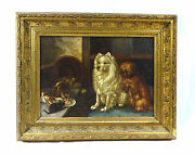Picture Painting In Frame Dogs Dog Spitz Cats Signed 19 Century