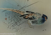 Chinese Or Japanese Painting Pheasant On Silk Signed Antique