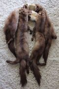 Vintage Russian Sable Fur Scarf Boa Stole Tail Wrap 6 Full Body
