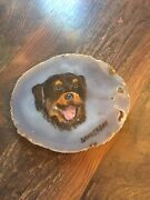 Collectible 5x4 Hand Painted Rottweiler Brown Agate Geode By C. Sanderson
