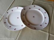 2 Antique Morley Ware Pink Rose Dinner Plates Red Ridgway Homeleigh
