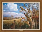 October Memories - Pheasants Framed Limited Edition Canvas By David A. Maass