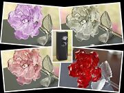 Waterford Crystal Rose-fleurology Flower Pink Red Lavender Clear New In Box