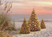 Decorated Trees On Beach - Box Of 18 Alan Giana Tropical Christmas Cards