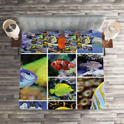 Tropical Quilted Coverlet And Pillow Shams Set, Collage Of Underwater Print