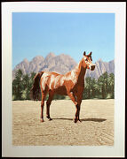 Dallas John At The Oasis Signed Ltd Ed Art Serigraph Palm Trees And Horse Obo
