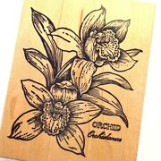 Orchids Rubber Stamp Gorgeous Blooms Flower Blossoms Latin K 565 Psx Very Rare