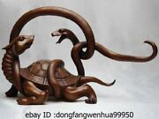 8 China Red Copper Art Decoration Fengshui Basaltic Turtle Tortoise Snake Statue