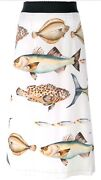 Bnwt Dolce And Gabbana White 2195 Fish Print Skirt Sz.42 Us6 - Sold Out