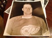 Dave Trottier 1938 Detroit Red Wings Nhl Hockey Photo Michigan Tigers Lions