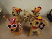 5 Taco Bell Chihuahua's