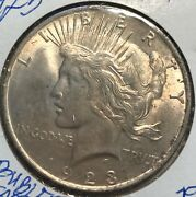 1923 Vam Double Eagle Peace Dollar L@@k At Pictures 1798