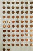 1953-2012 Canada 1 Cent Penny Key Dates And Varieties 72 Coins