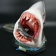 Infinity Studio Carcharodon Carcharias Resin Model Painted Statue In Stock New