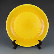 16.1 Old Chinese Antique Porcelain Xuande Yellow Glaze Dragon Pattern Plates
