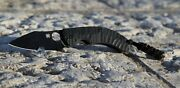 Spyderco Perrin Ppt Sprint Discontinued And Rare C135gbbk Bnib Cpm S30v Steel