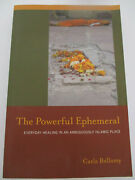 New The Powerful Ephemeral Everyday Healing In An Islamic Place Paperback Book