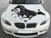 Vinyl Car Hood Wrap Color Graphics Decal Black Horse Mustang Abstract Sticker
