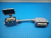 Conversion / Patch Cable - Female 10 Pin To Male 16 Pin - P02-000203