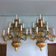 Gilt Brass 10 Candle Sconce Pair 23 1/2andrdquo Tall