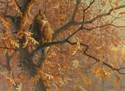 Dawn's Cloak - Great Horned Owl Limited Edition Canvas By Jim Rataczak