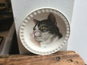 Royal Falcon Ware Hoffritz Porcelain Cat Plate 5 Made In England