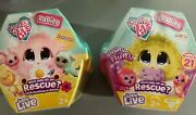 Nib Lot 5 Scruff A Luvs Babies Which Baby Will You Rescue Toys With Crate Comb