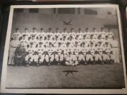 Boston Red Sox 1946 Team Photo Mlb Baseball Ted Williams Braves Celtics Bruins