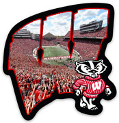 Wisconsin Badgers Letter Logo Photo Field And Bucky Badger Type Die-cut Magnet