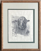 Rare Estate Find Pen Drawing Print Sheepandrsquos Head Framed Matted Hanging Wall Art