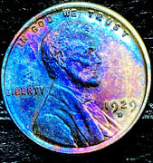 1929-d Lincoln Wheat Penny Cent- Beautiful Toning Superb Gem High Ms Grade 00