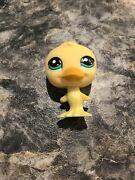 Littlest Pet Shop 2436 Blind Bag Yellow Duck With Teal Eyes Rare